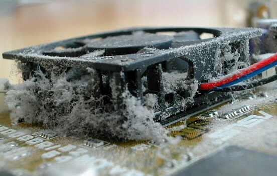 Dusty GeForce graphics card