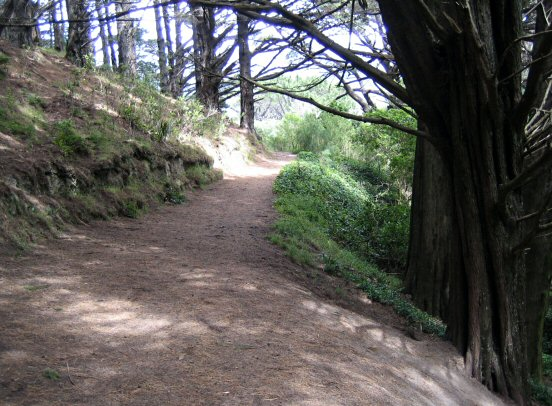 Lord of the Rings filming location in Mount Victoria