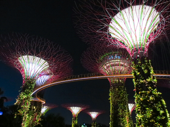 Supertree Grove in Gardens by the Bay